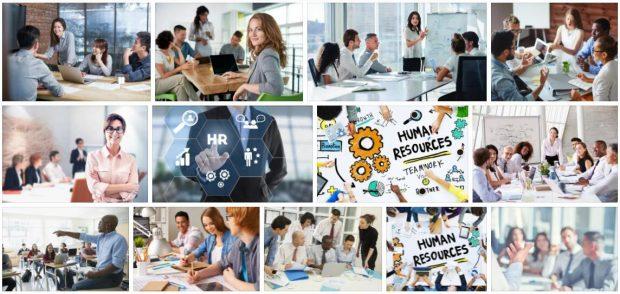 Study Human Resources